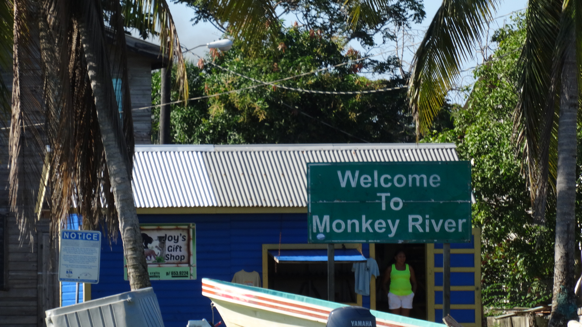 monkey river town belize